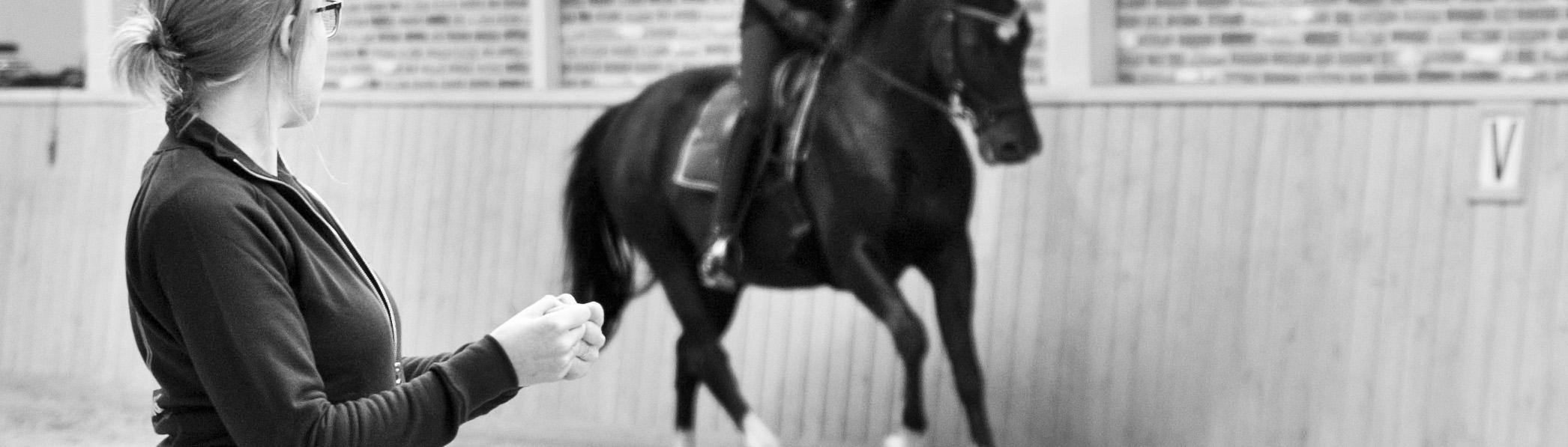 handhouding corrigeren te paard