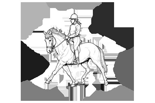 balans van ruiter te paard factoren