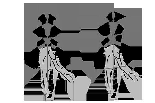 symmetrie bereiken van ruiter te paard met hippische sportoefentherapie in bolsward